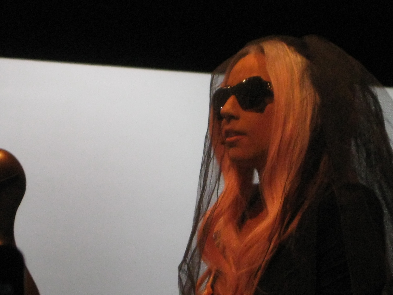 Lady Gaga at Polaroid Booth CES 2011