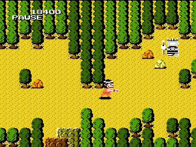 Dragon Power NES
